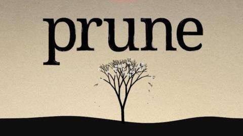 Jaquette de Prune, un titre pour les élever tous sur iOS