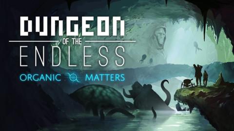 Jaquette de Dungeon of the Endless s'enrichit de deux nouvelles extensions