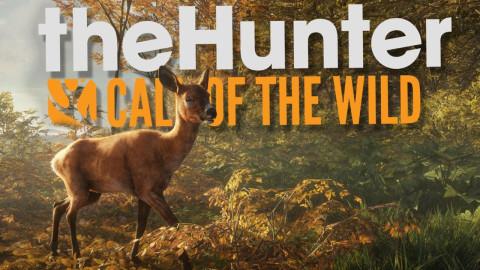 Jaquette de The Hunter : Call of the Wild, la chasse est de retour sur PC