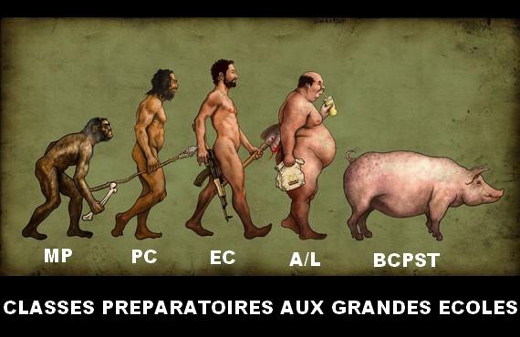 http://image.noelshack.com/fichiers/2014/31/1407100058-evolution-cpge.jpg