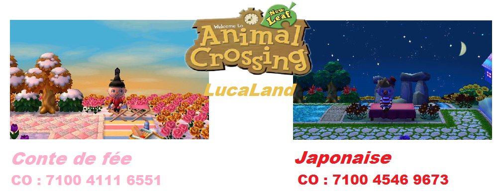 Code Onirique Animal Crossing New Leaf Belle Ville