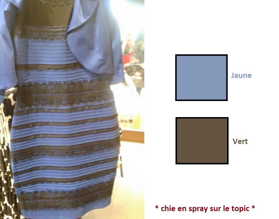 La robe blanche et or ou bleue et noire