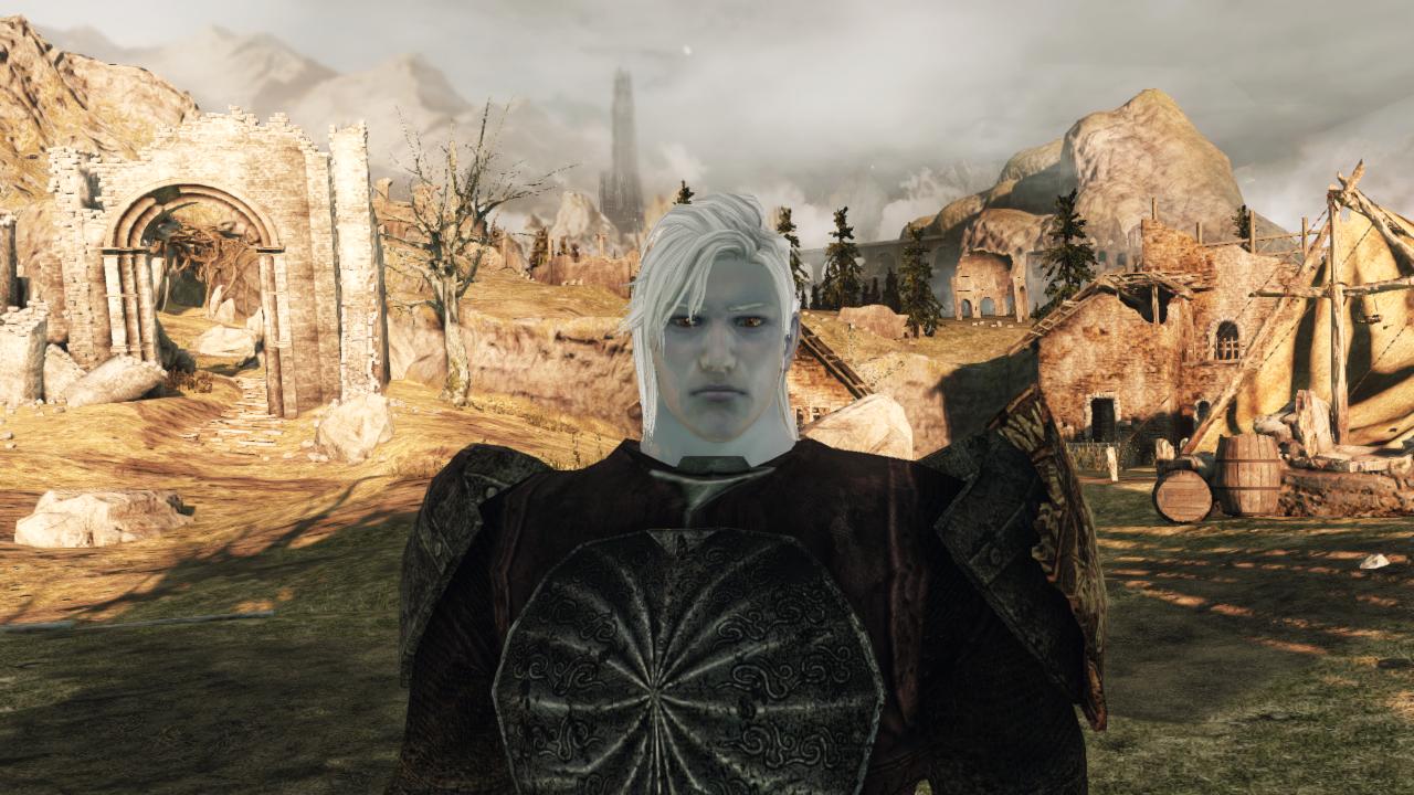 Dark Souls  Sotfs Dex Int Build