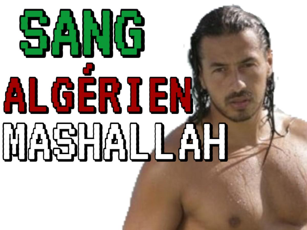 Sticker other sang algerien mashallah
