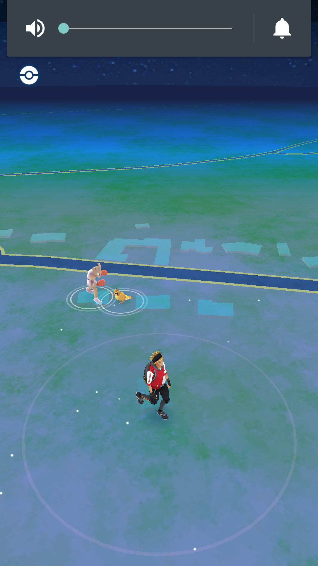 Le pok mon le plus rare que vous ayez vu en campagne sur - Les pokemon rare ...