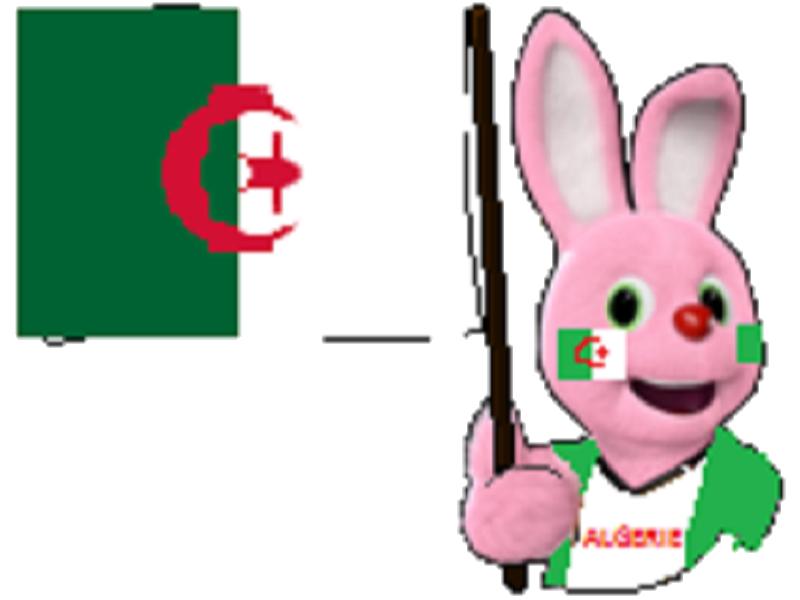 Sticker duracell drapeau algerie