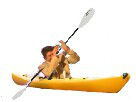 Sticker pagayer kayak canoe