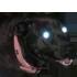 Sticker chien possede