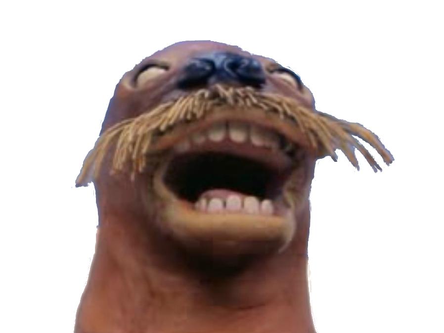 Sticker pingu morse phoque rire