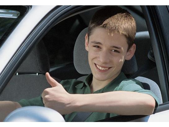 Sticker fragile celestin voiture permis pouce ok plus 1 victime bg timide