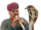 Sticker charmeur de serpents indien turban flute pipeau pipo cobra vipere menteur risitas issou la chancla