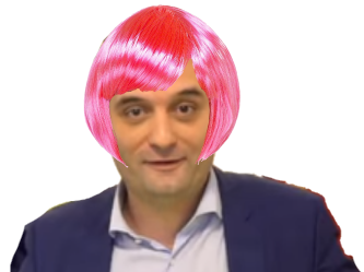 Sticker florian philippot fn perruque femme cheveux roses front national politic politique