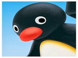 Sticker pingu pingouin quoi what neutre