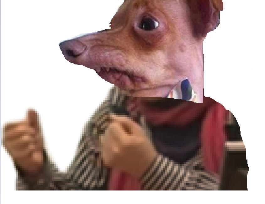 Sticker risichien chien taper