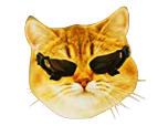 Sticker other twitch tv television stream emote emoticone dxcat