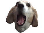 Sticker other twitch tv television stream emote emoticone ohmydog