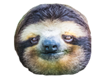 Sticker other twitch tv television stream emote emoticone ossloth