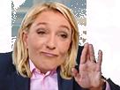 Sticker politic marine lepen paume ancestrale zoulman le pen fn hain main zemmour mouai incertain