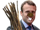 Sticker politic macron barrage castor cuckstor cuck fn riche issou dents