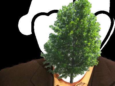 Sticker risitas arbre lol mdr eco