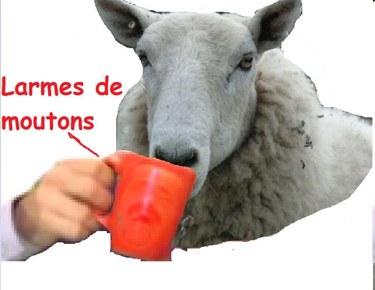 Sticker other larmes de moutons pleurs macron