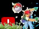 Sticker risitas ddb pokemon pokeball sacha sasha capture