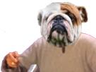 Sticker risitas chien bull dogue bulldog animal mix