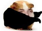 Sticker risitas cochon dinde masque hamster rongeur cute mignon adorable atome