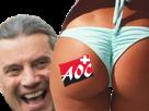 Sticker politic suisse cul fille freysinger droite