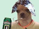 Sticker risitas chien complot fume