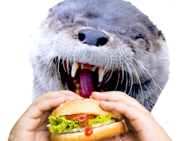 Sticker other loutre burger hamburger cheeseburger kebab mcdo mange manger bouffe animal