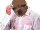 Sticker risitas chien sueur papier