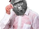 Sticker risitas sueur singe macaque