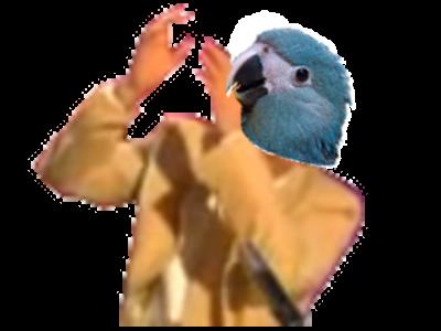 Sticker risitas spix macaw blu jesus dab