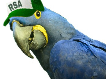 Sticker other spix macaw blu rsa casquette