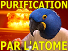 Sticker risitas spix atome purification
