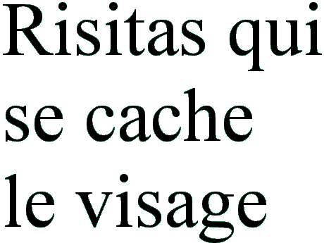 Sticker risitas visage eco texte