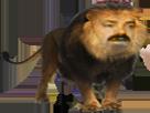 Sticker risitas lion animal tete animaux jungle safari fic