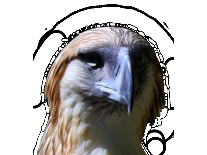 Sticker risitas rapace faucon aigle qlf pnl