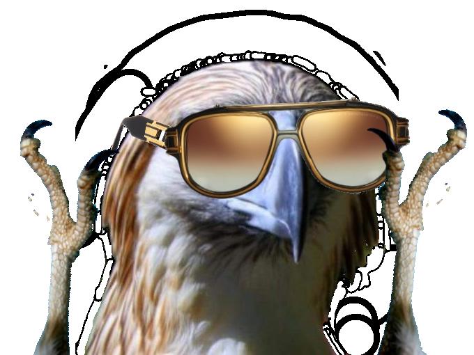 Sticker risitas rapace faucon aigle qlf pnl lunette soleil peace love