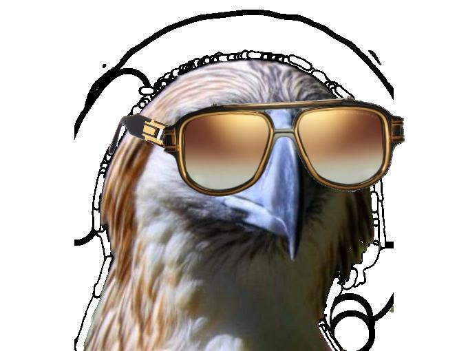 Sticker other rapace faucon aigle qlf pnl lunette soleil