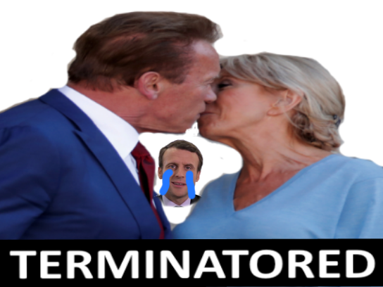Sticker politic terminatored macron cuck brigitte