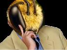 Sticker risitas abeille bee