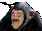 Sticker risitas singe risisinge macaque