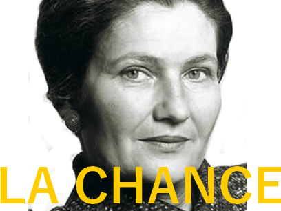 Sticker other simone veil ivg genocide