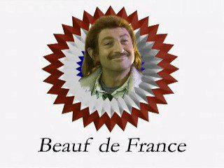 Sticker other beauf france kad