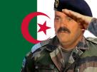 Sticker algerie algerien soldat militaire armee guerre risitas drapeau pixls pixels pixelcanvas