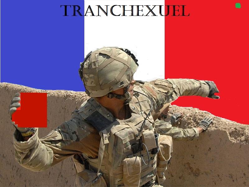 Sticker risitas soldat frwar pixel canvas