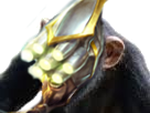 Sticker other league of legends lol maitre master yi champion ionia guerrier chinois chine asiatique epee sabre wuju singe bonobo chimpanze macaque tinnova