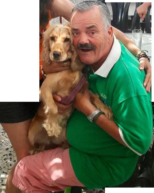 Sticker risitas chien polo vert 2017